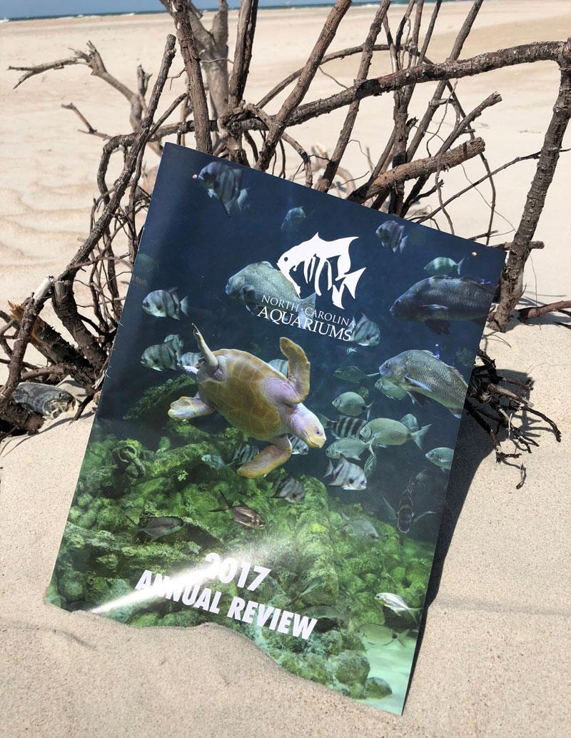 North Carolina Aquarium Society Annual Review for 2017 on the beach