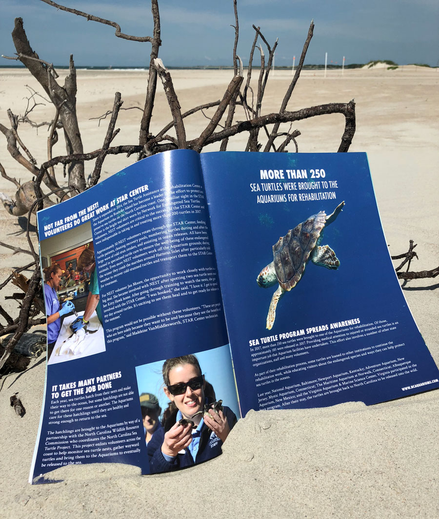 North Carolina Aquarium Society Annual Review inside spread on the beach