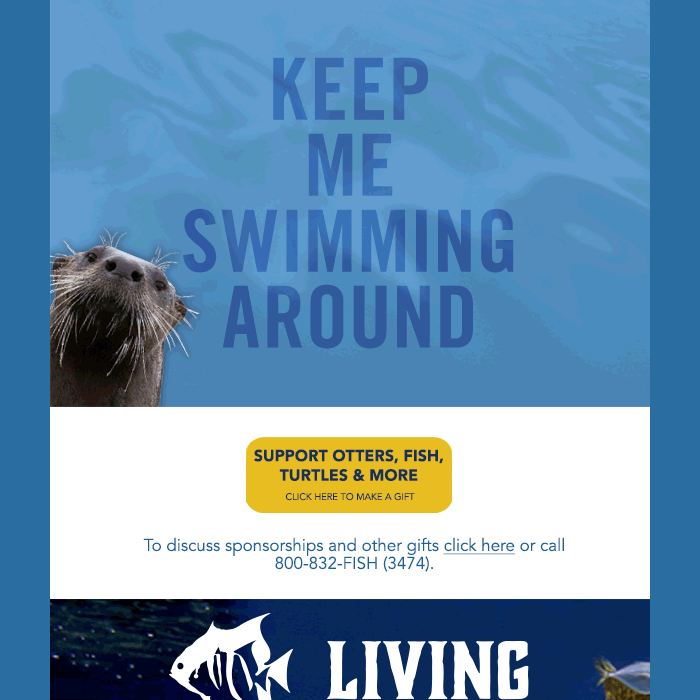 North Carolina Aquarium Society E-blast