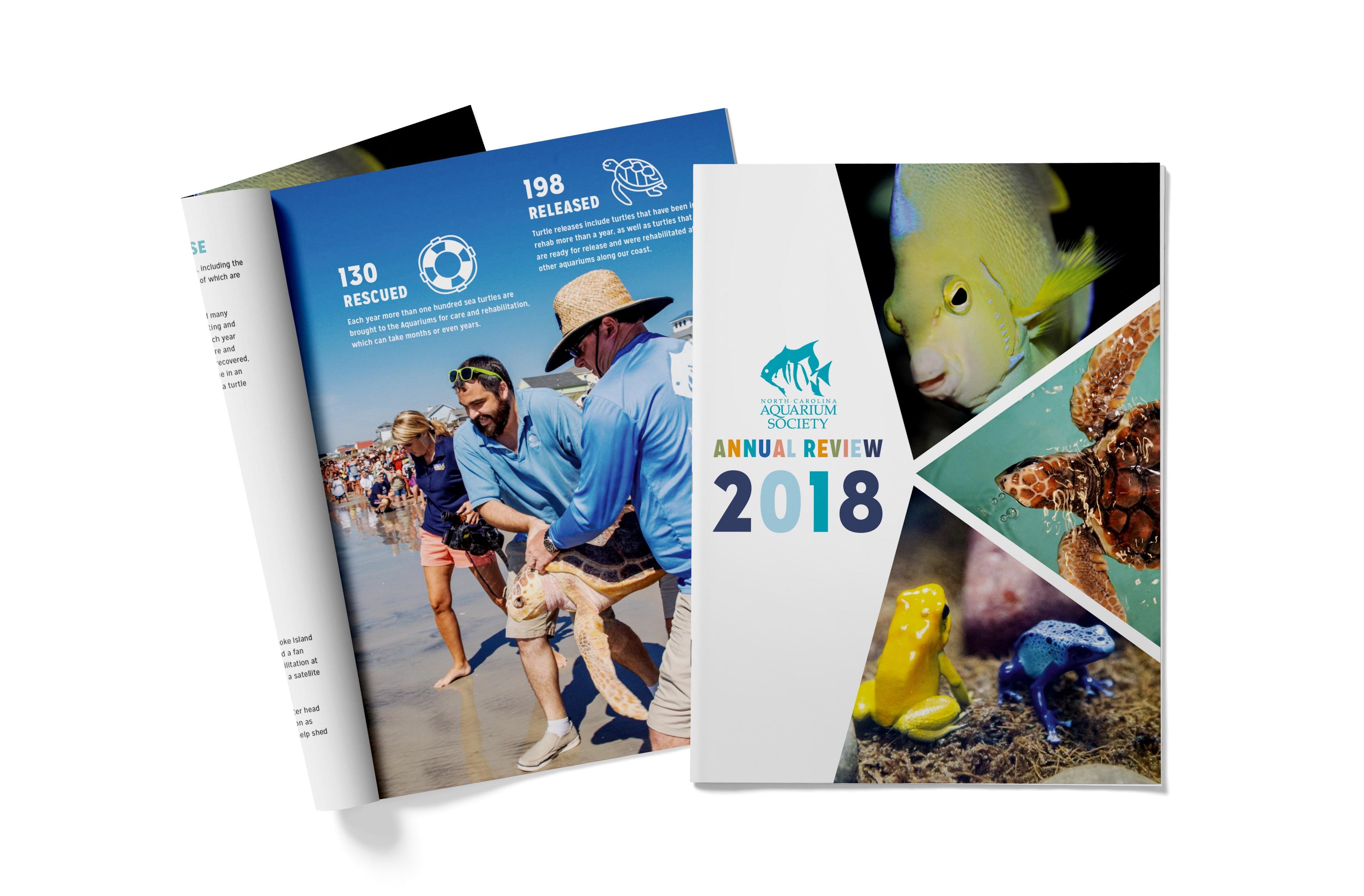NCAS Annual Review 2018